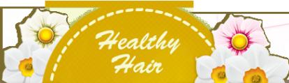 Логотип компании Healthy Hair